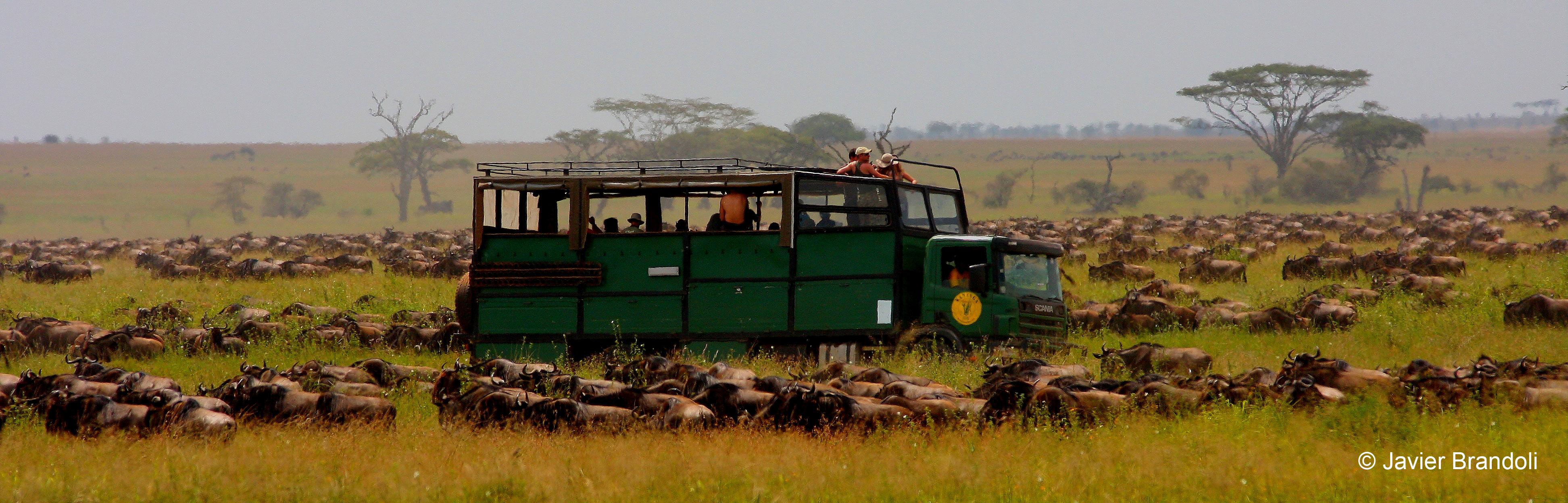 Kananga, camion, safari, Tanzania, Kenya, Africa Austral, Namibia, Africa Oriental, viajes, 4x4